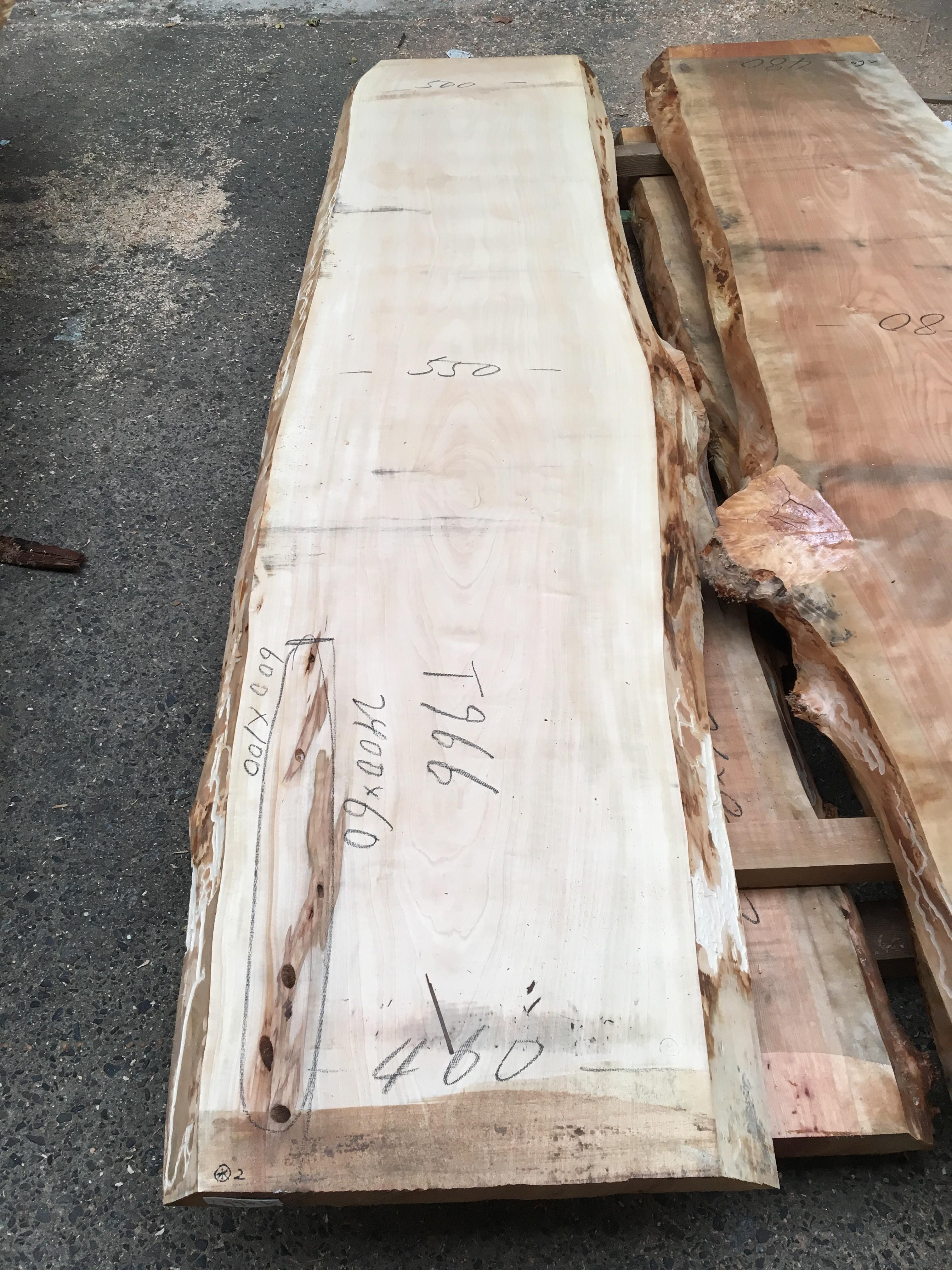 栃の木一枚板t966