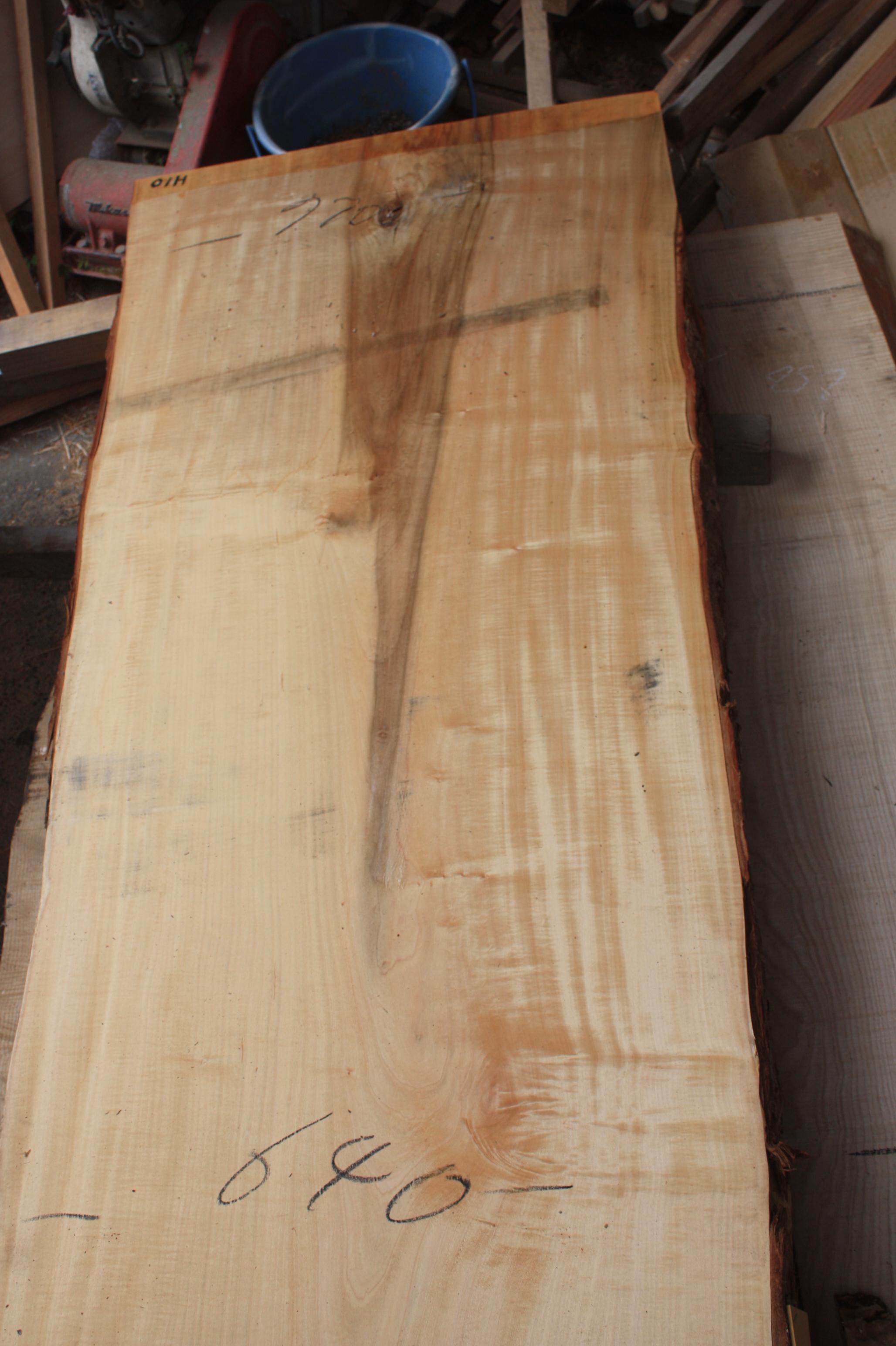 栃の木一枚板t946