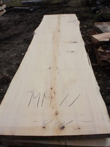 モミの木一枚板MM11