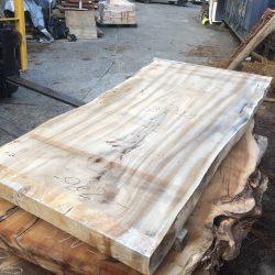 楠の木一枚板KS38