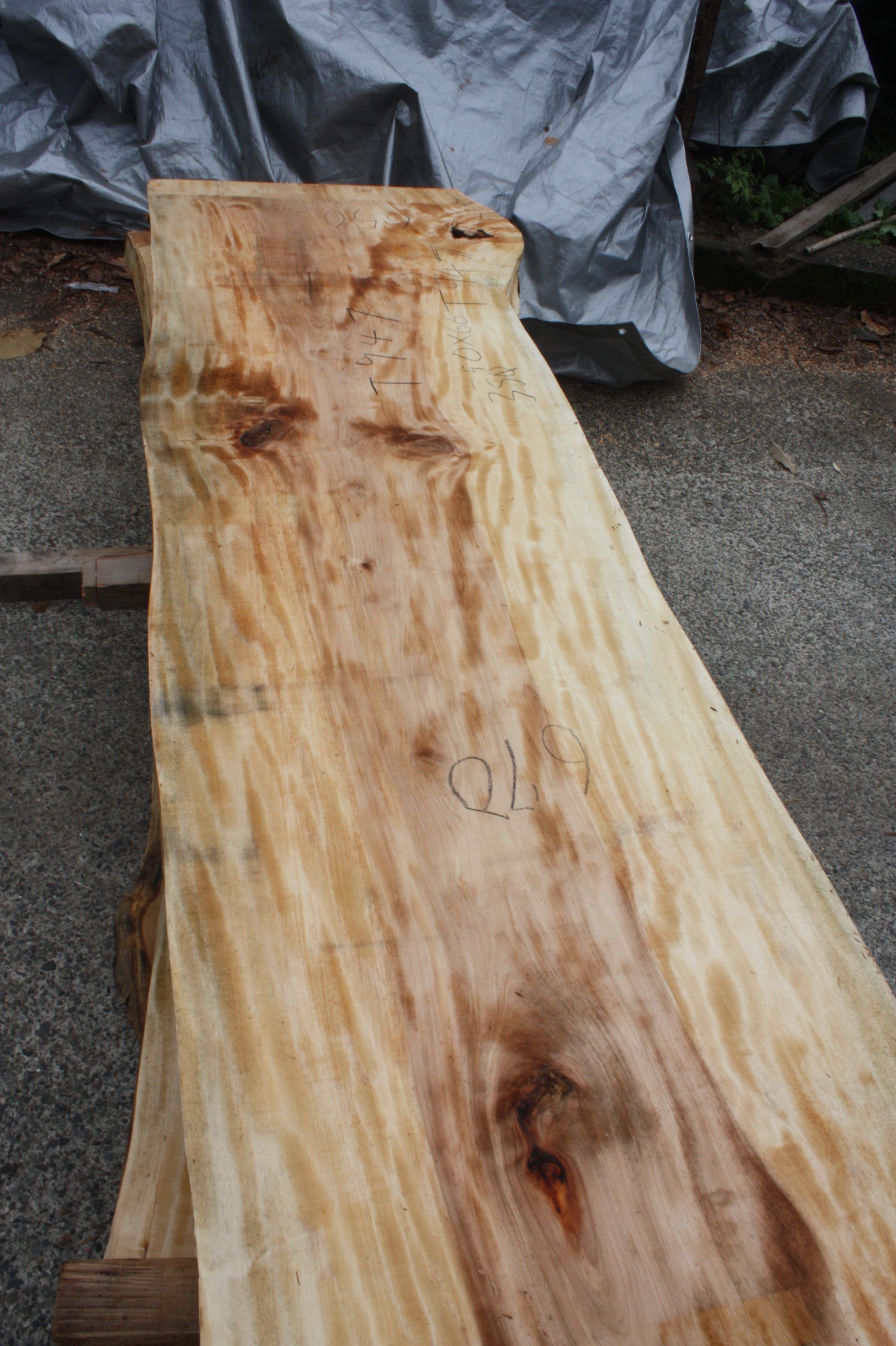 栃の木一枚板t947