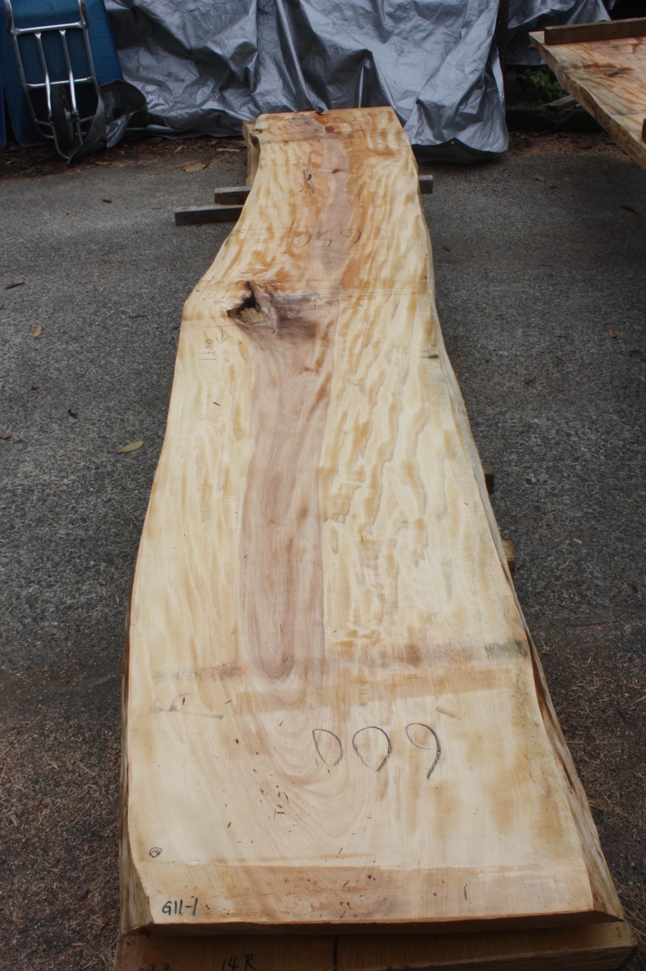 栃の木一枚板t948