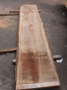 タモ一枚板TM535