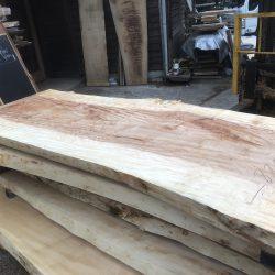 栃の木一枚板t996