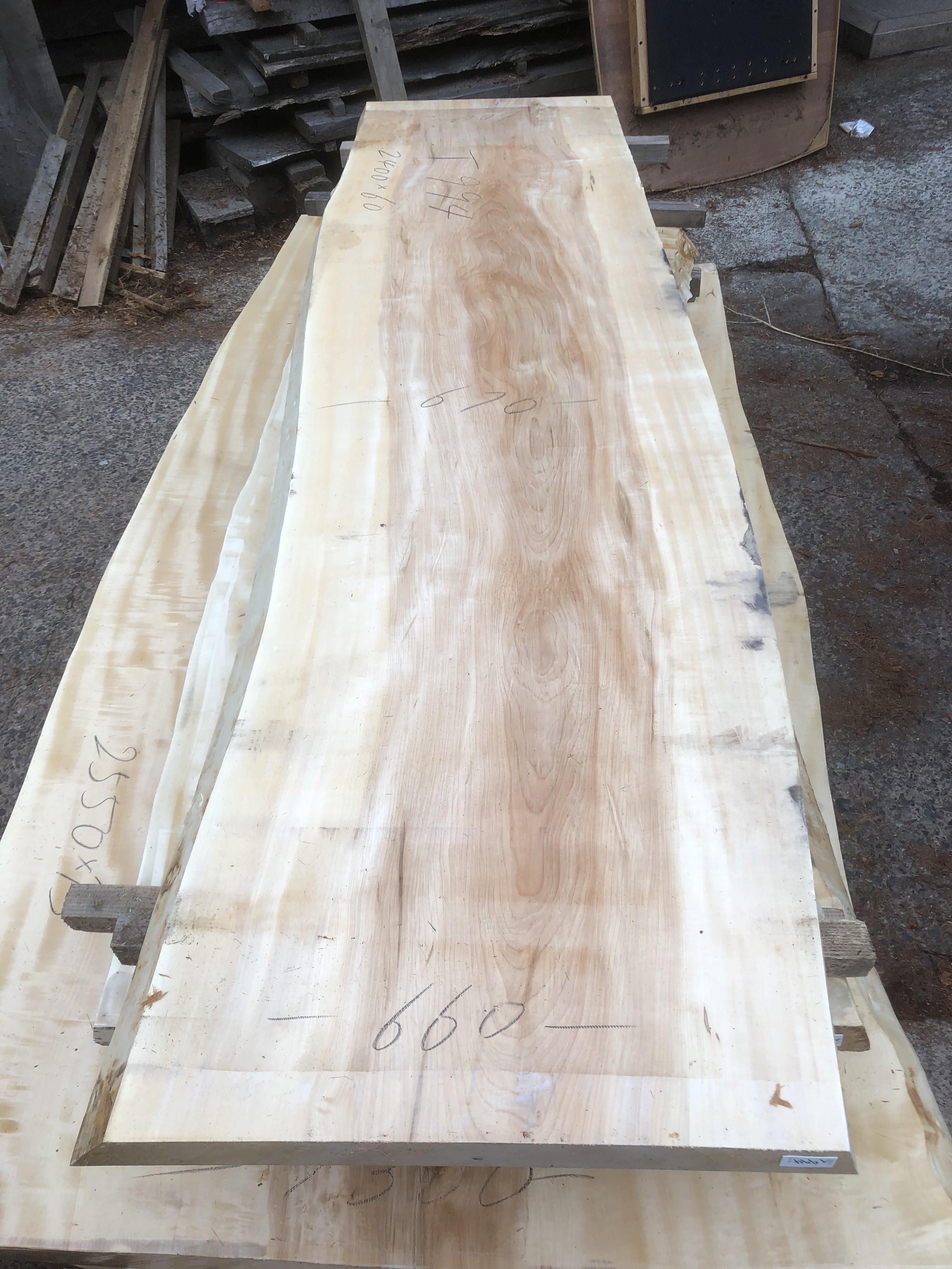 栃の木一枚板t994