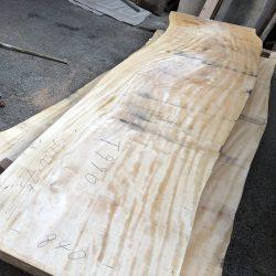 栃の木一枚板t990