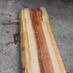 吉野杉一枚板s1137
