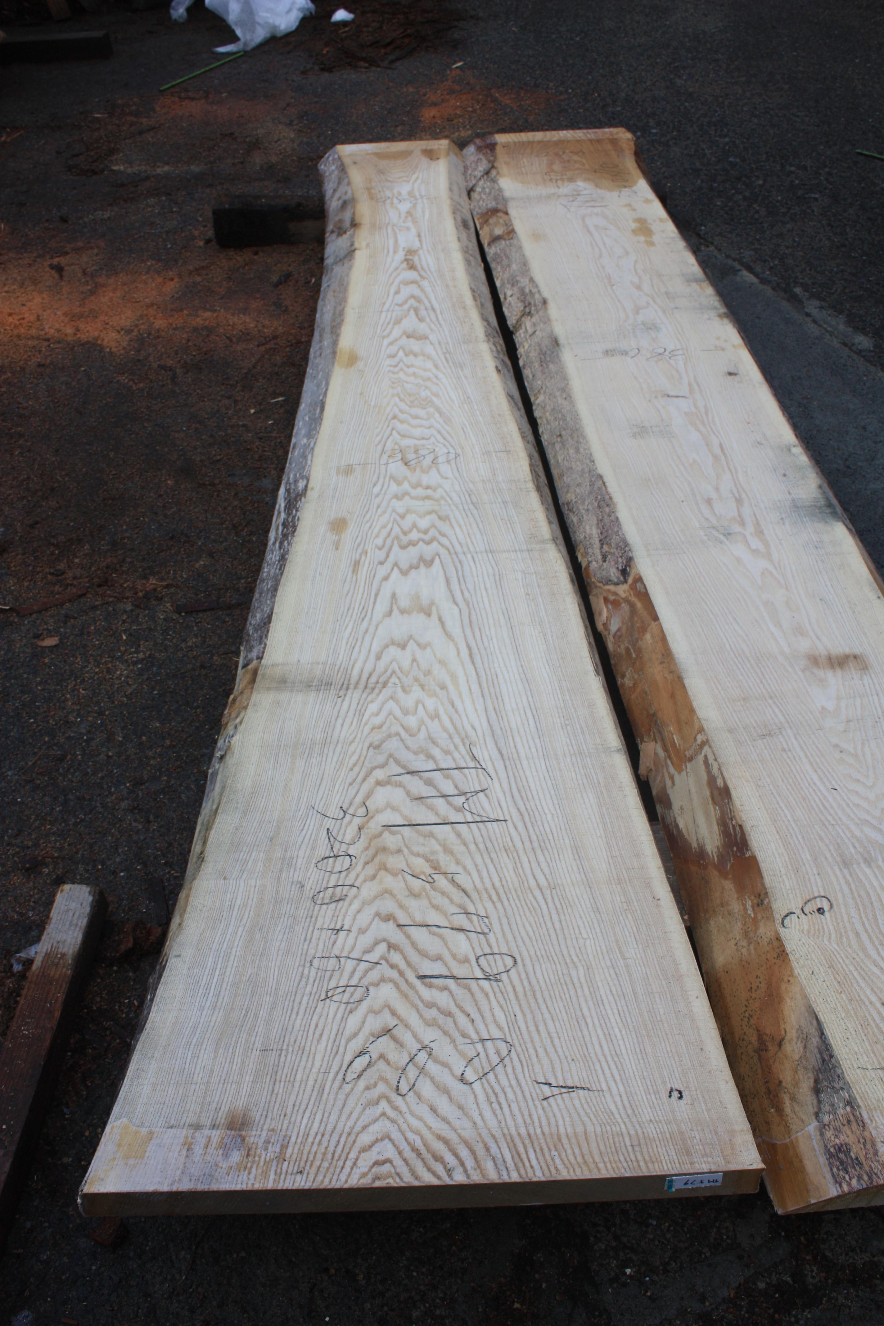 タモ一枚板TM579