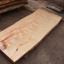 栃の木一枚板t973
