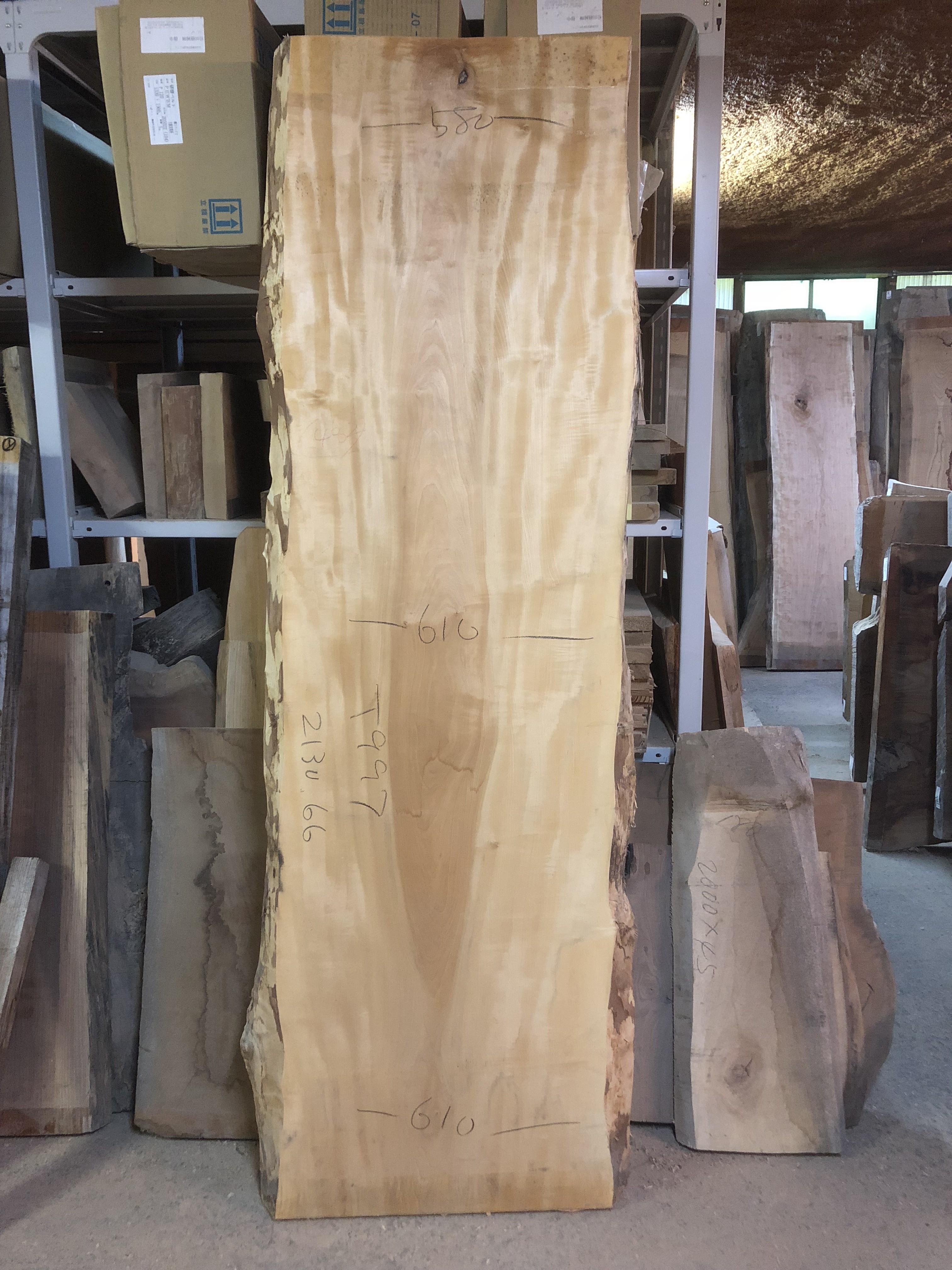 栃の木一枚板t997