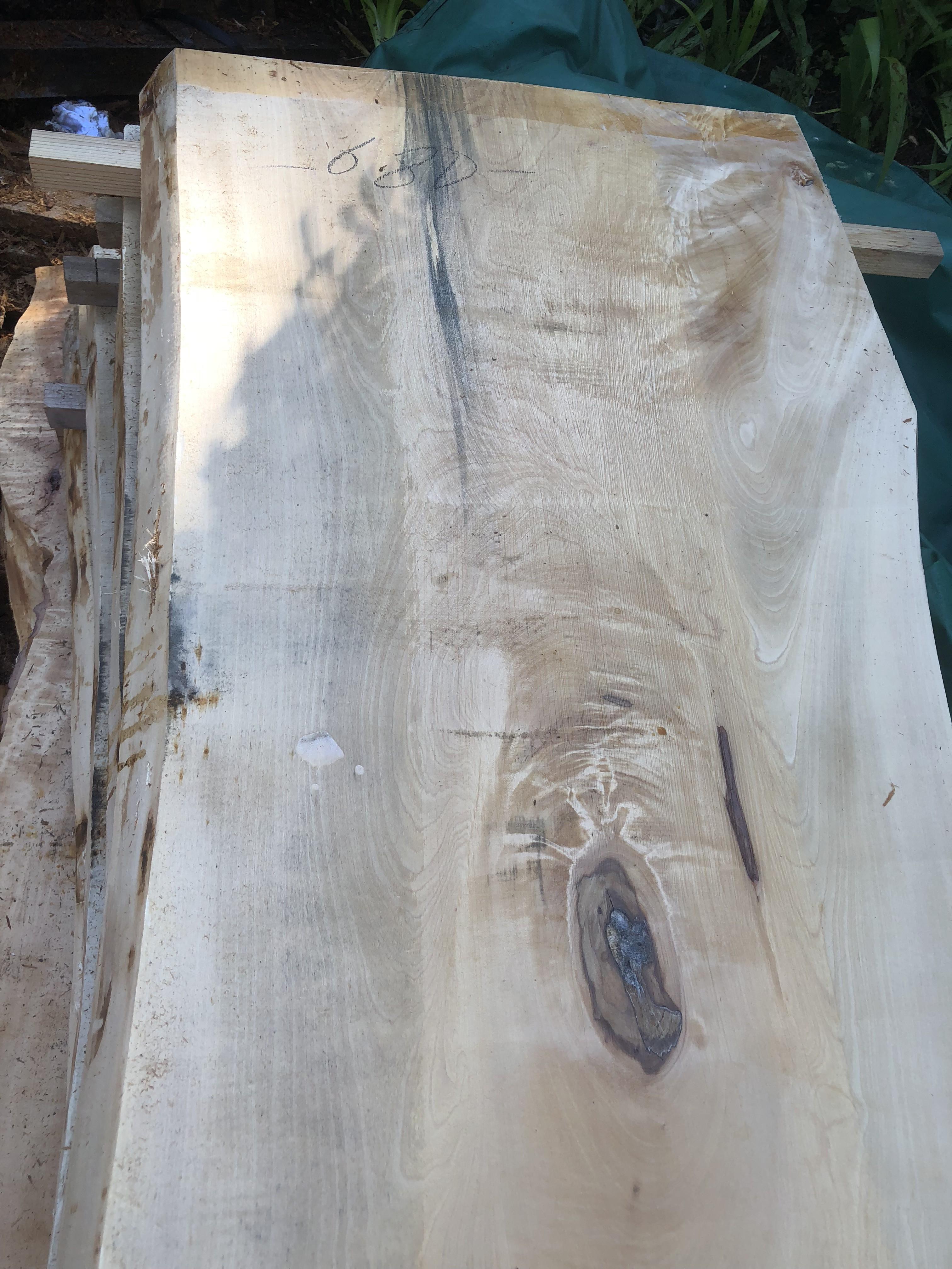 栃の木一枚板t1002