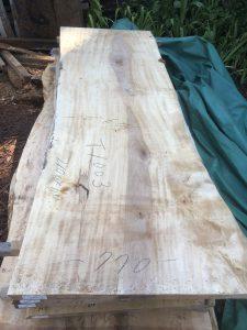 栃の木一枚板t1003