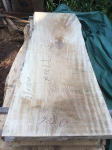 栃の木一枚板t1004