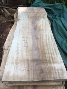 栃の木一枚板t1005