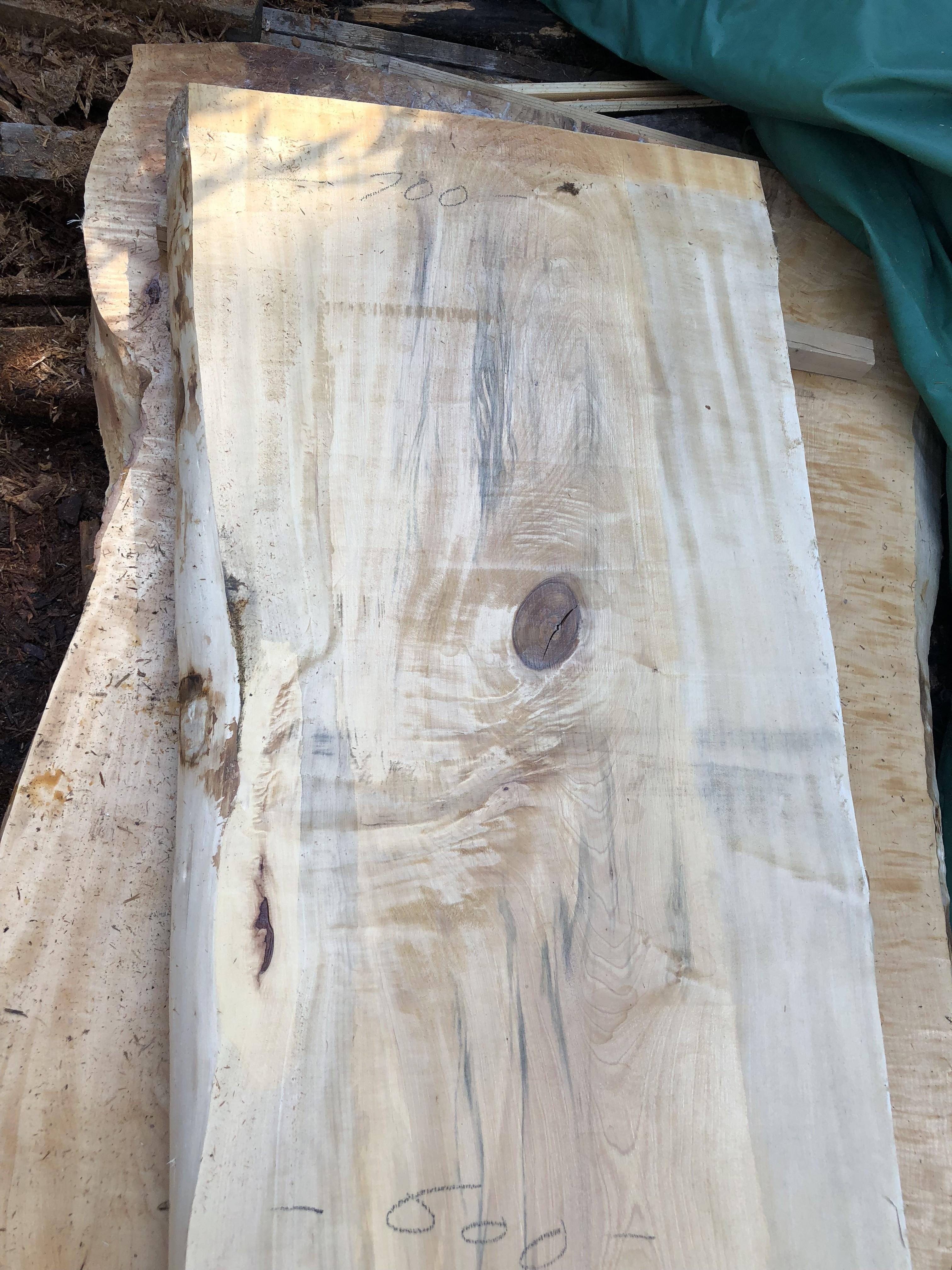 栃の木一枚板t1006