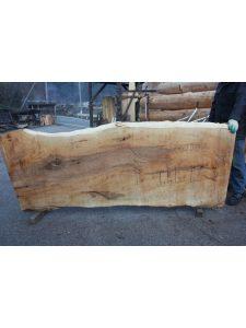 栃の木一枚板t799