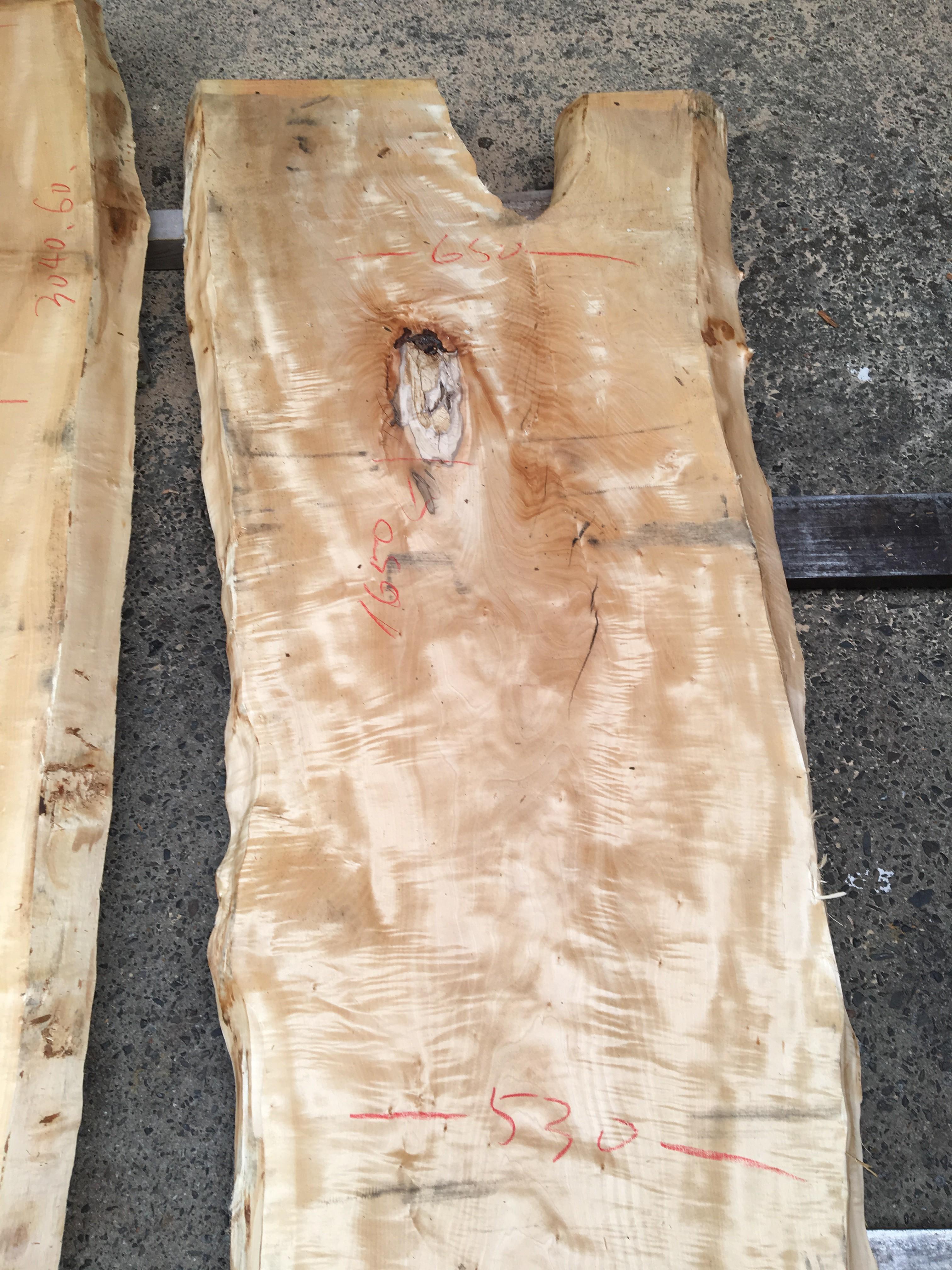 栃の木一枚板t981