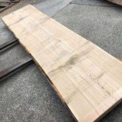 タモ一枚板TM762