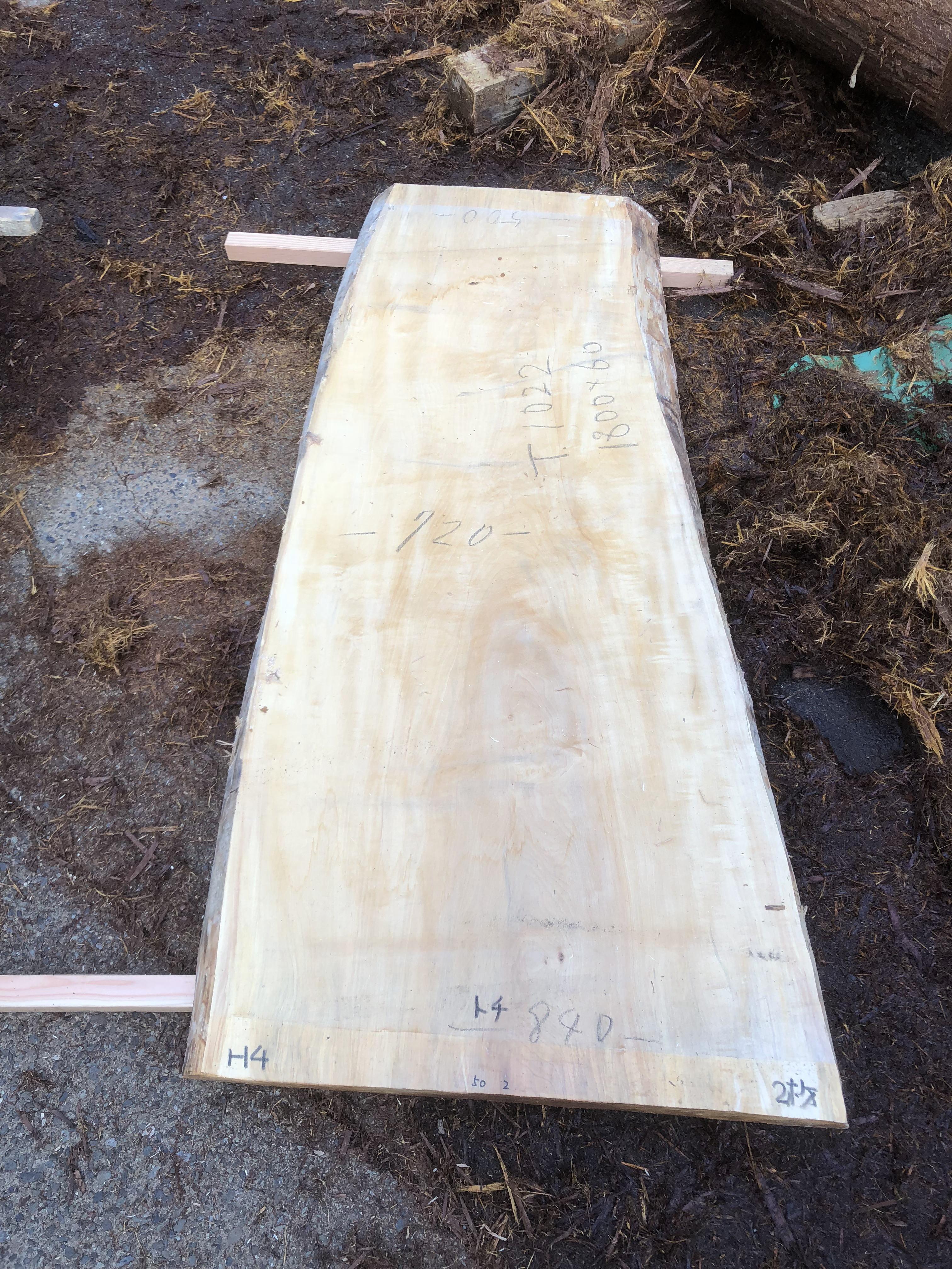 栃の木一枚板t1022