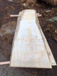 栃の木一枚板t1021