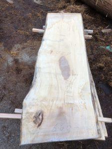 栃の木一枚板t1020
