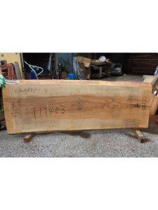 タモ一枚板TM403