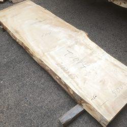 栃の木一枚板t1014