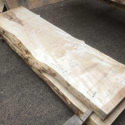 栃の木一枚板t1015