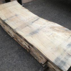 栃の木一枚板t1018