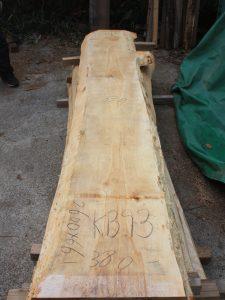 樺一枚板KB93