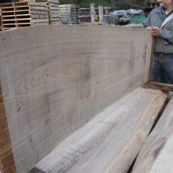 タモ一枚板TM483