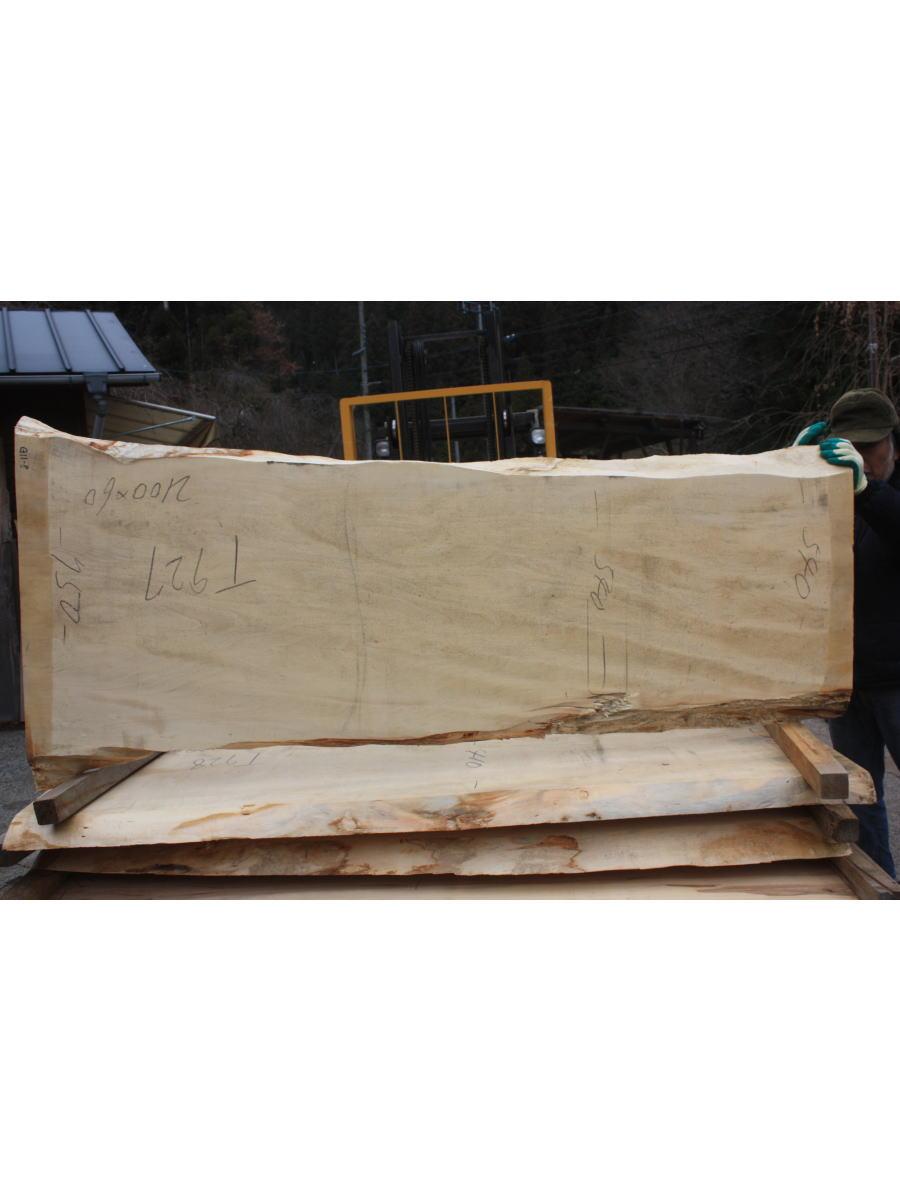 栃の木一枚板t927